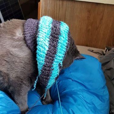 EnfoireFalseSweater