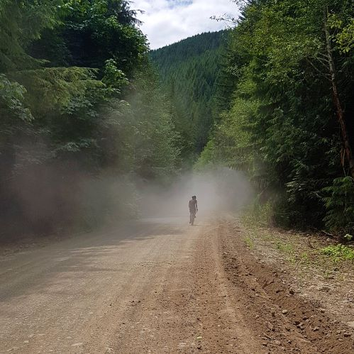 A silhoutte of a cyclist is visible through a cloud of dust in the distance. The dirt road is surrounded by evergreen trees.