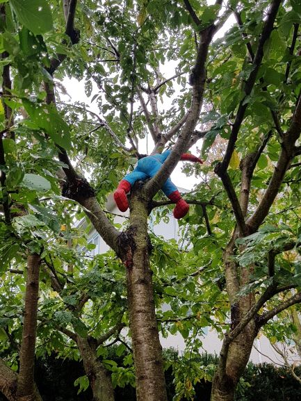 The rear of a Spiderman plushie is visible in a deciduous tree.