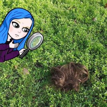 A brown wig sits on grass. On the left, is a blue-haired bitmoji with a magnifying glass.
