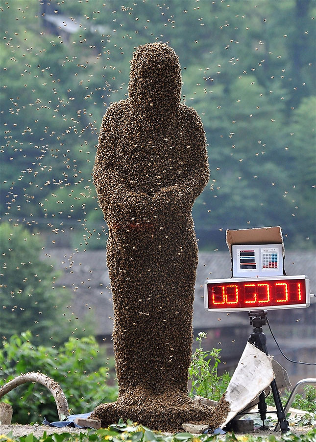 What looks like a statue made of bees stand amid swarming bees. A digital display is shown on the right.