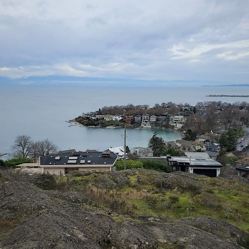 View of Gonzales Bay from Gonzales Hill Regional Park. It's an overcast day and houses line the shore.